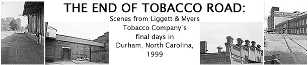 an introduction to the historical background of tobacco and cigarettes Background13 2 terms of reference brief historical overview28 3612 general pharmacodynamic (physiological) effects28 3613 toxicity conclusions on tobacco.